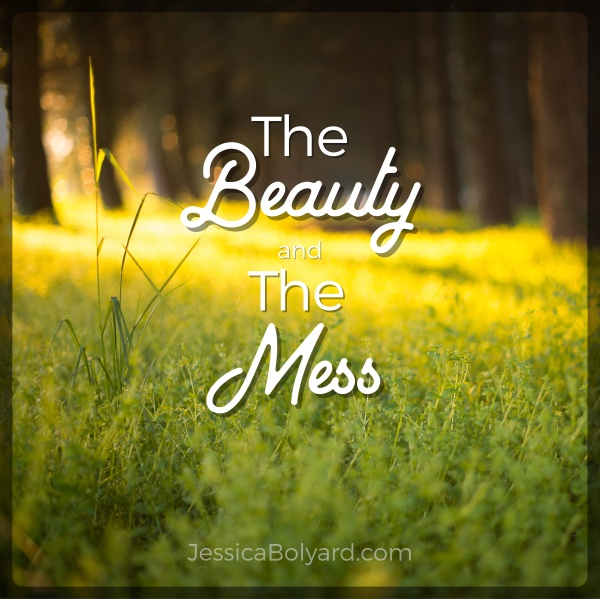 The Beauty and The Mess
