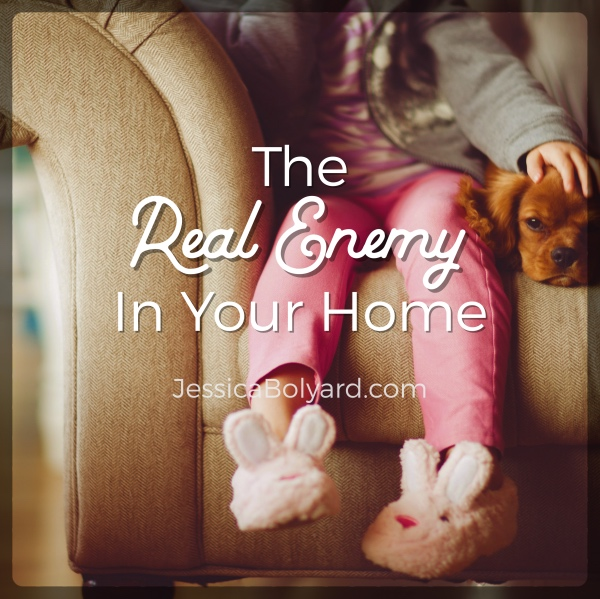 The Real Enemy In Your Home